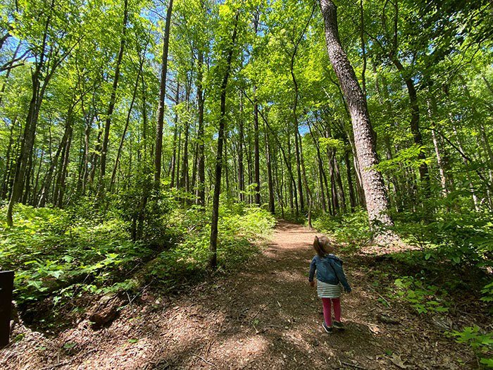 Medoc Mountain State Park Hiking Hollister NC