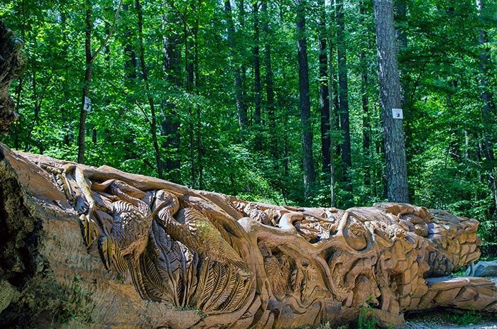 Umstead State Park Chainsaw Art