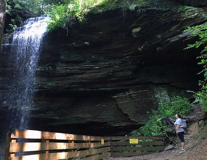 Moore Cove Falls is a waterfall near Brevard that's found after a short hike.