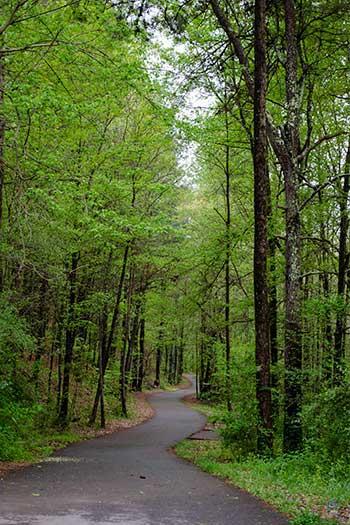 North Carolina Attractions Carolina Thread Trail Broad River Greenway Trail Images
