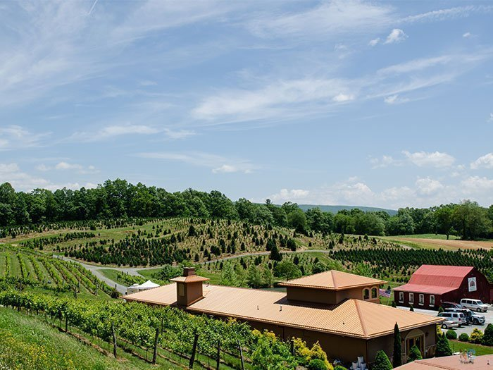 NC Wineries Linville Falls Winery Image