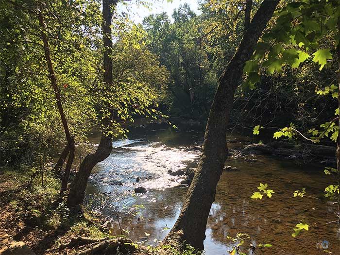 Eno River Trails Cole Mill Image