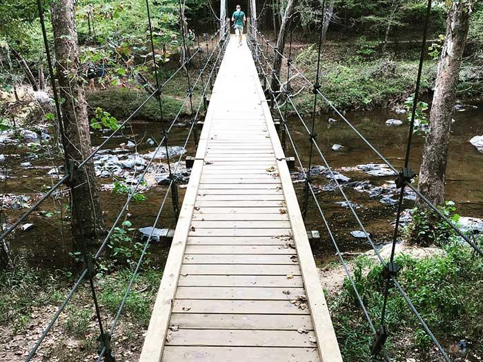 Eno River Trails Cox Mountain Image