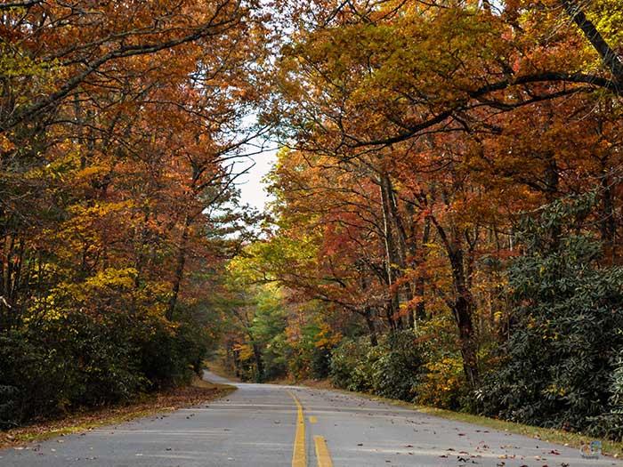 Blue Ridge Parkway North Carolina Image