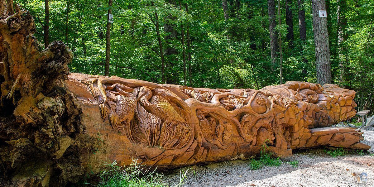 Umstead State Park in Raleigh NC Travel Guide Featured Image