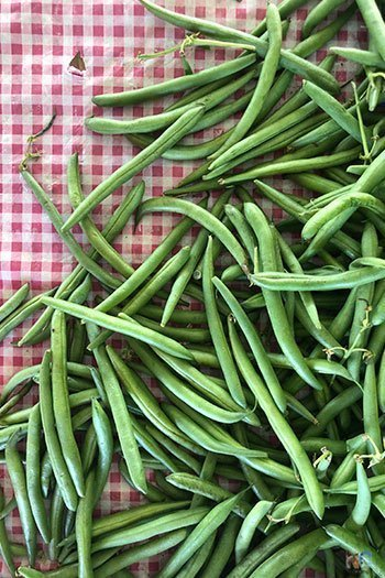 Kinston NC Lenoir County Farmers Market Image