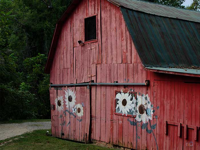 Barns in North Carolina Engadine Inn and Cabins Candler NC Image