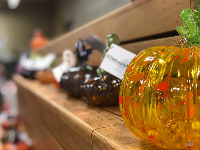 Things to Do in North Carolina in October Starworks Pumpkin Patch Image