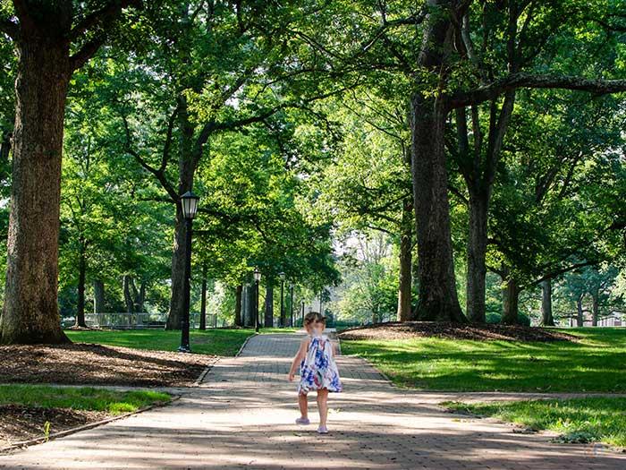 UNC Chapel Hill North Carolina Campus Image