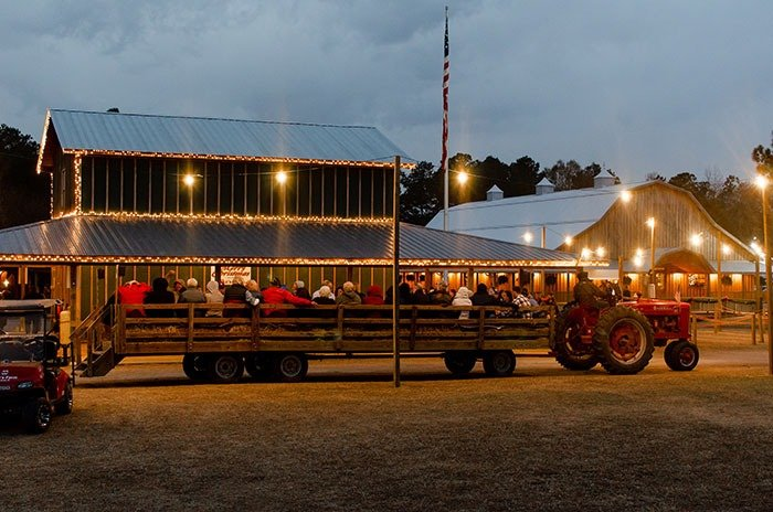 Mikes Farm Christmas Hayride Festival of Lights Image