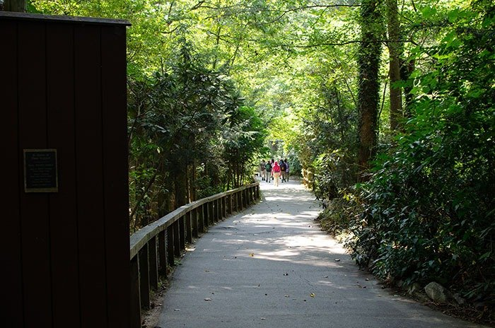 WNC Nature Center Trillium Nature Trail Image