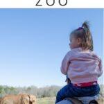 NC Zoo Pinterest Image 1