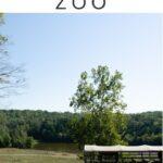 NC Zoo Pinterest Image 2
