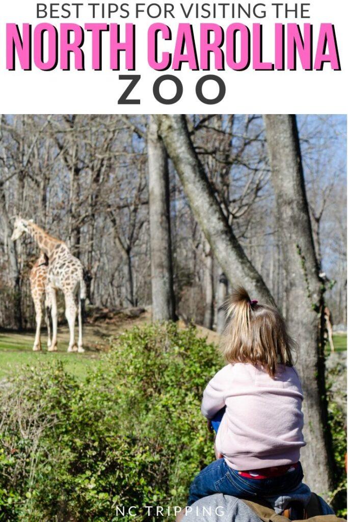 NC Zoo Pinterest Image 3