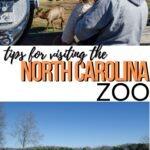 NC Zoo Pinterest Image 7
