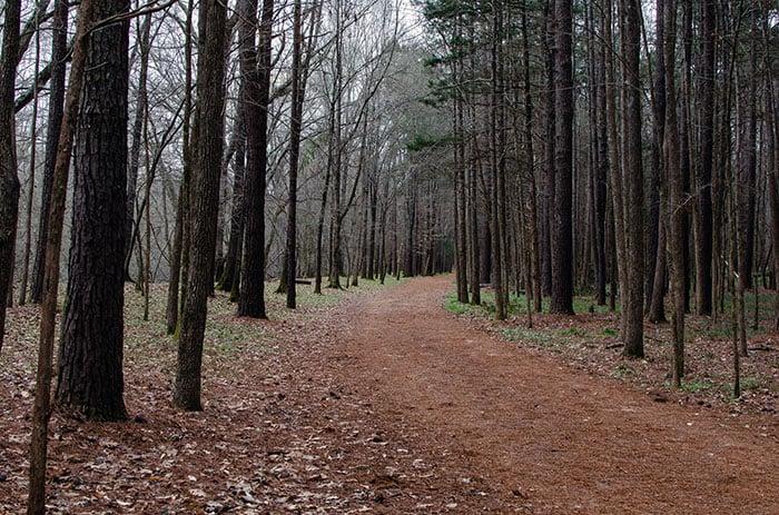 Occoneechee Hillsborough NC Image