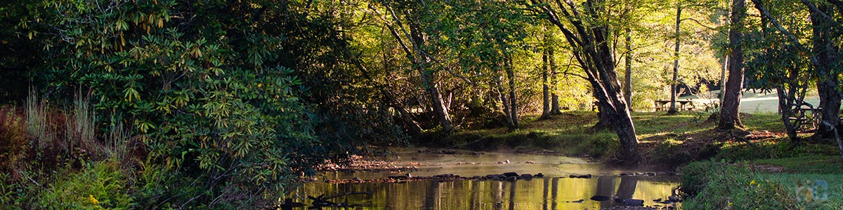 Outdoor Activities in North Carolina Image