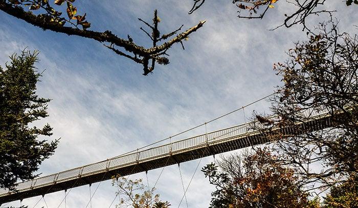 The Epic Grandfather Mountain Mile High Swinging Bridge