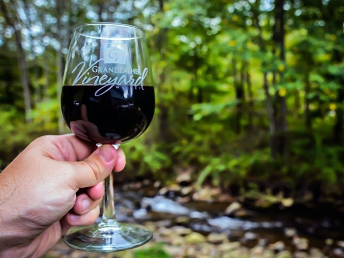 Day Trips from Asheville lead you to Grandfather Vineyard