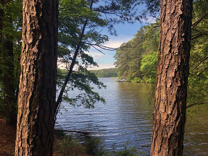Lake Johnson Park Raleigh NC