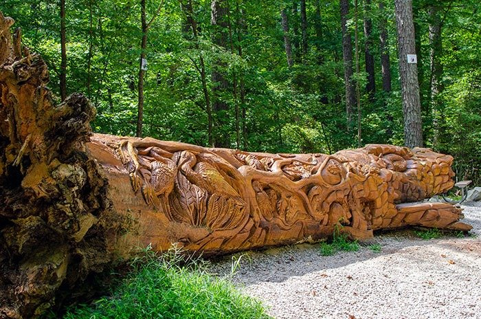 William B Umstead State Park Raleigh NC Chainsaw Art