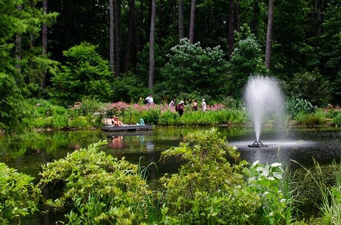 Cape Fear Botanical Gardens