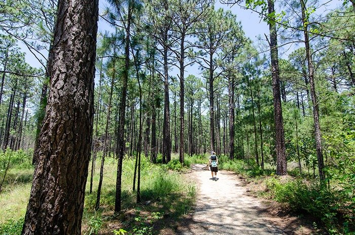 Carvers Creek outdoor things to do in Fayetteville NC