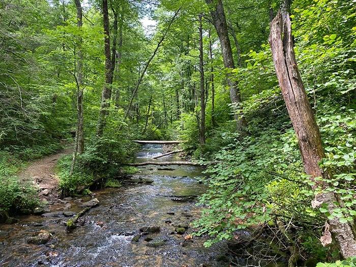 Loop trail at Crabtree Falls
