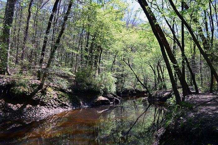 Raven Rock Campbell Creek Loop Trail
