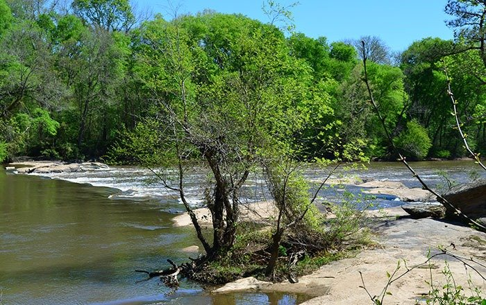 Raven Rock State Park Cape Fear River and Lanier Falls