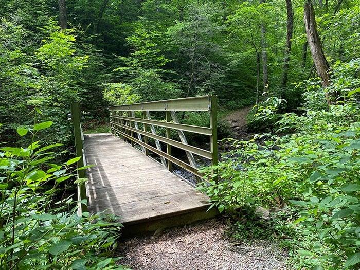 bridge on loop at Crabtree Falls