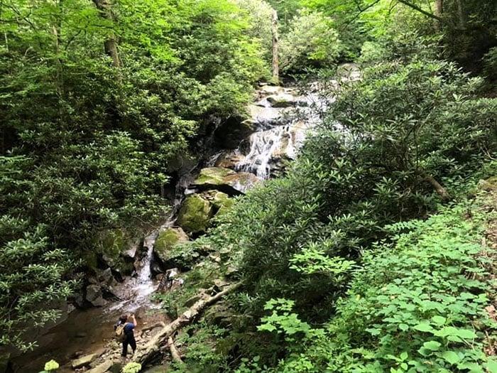 The Cascades on Glen Burney Trail