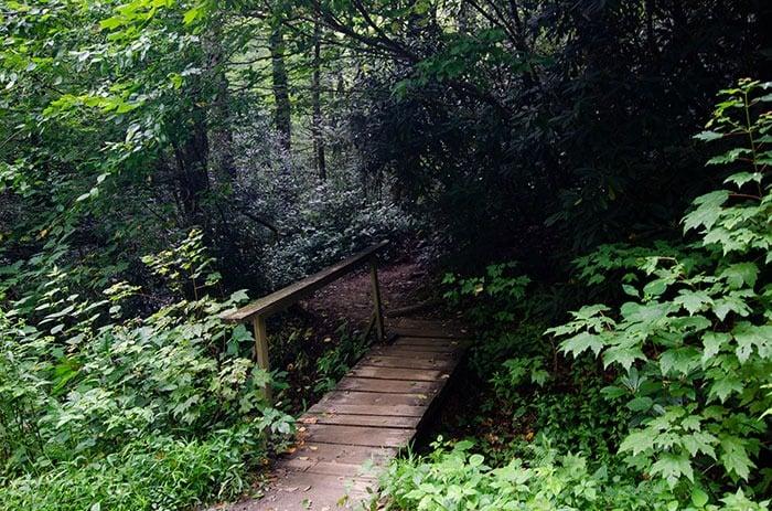 Bridge at Roaring Fork Falls