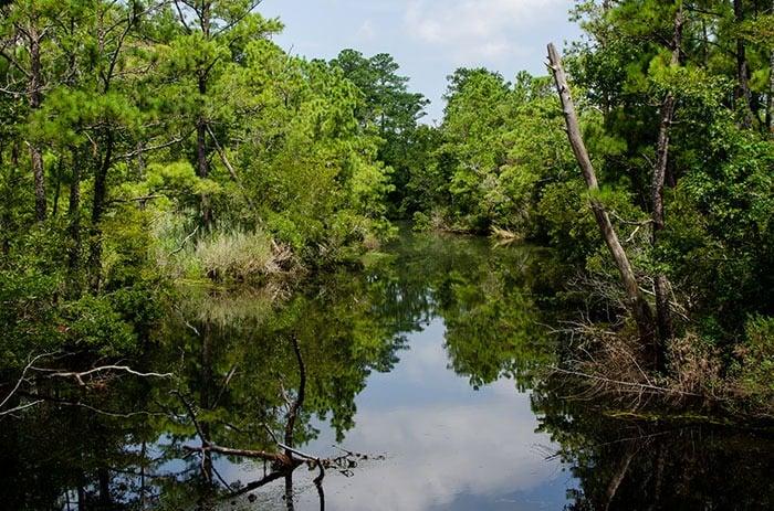 Creek View at Kitty Hawk Woods