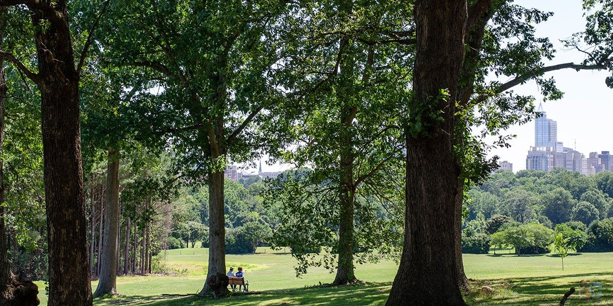 Kate Pearce joined NC Travel Chat to talk about Dorothea Dix Park in Raleigh, simply known by many of us in the area as Dix Park.