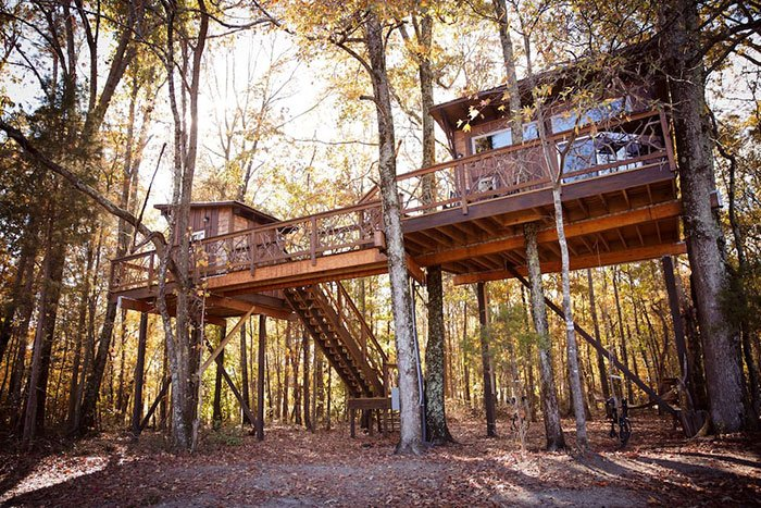 The Big Nick Treehouse Airbnbs in North Carolina