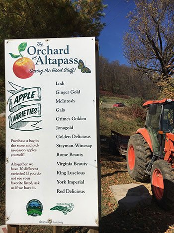 The Orchard at Altapass is one of the most popular places to go apple picking in North Carolina.