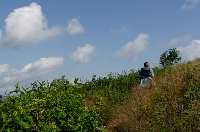 hiking up the spur trail at Black Balsam Knob