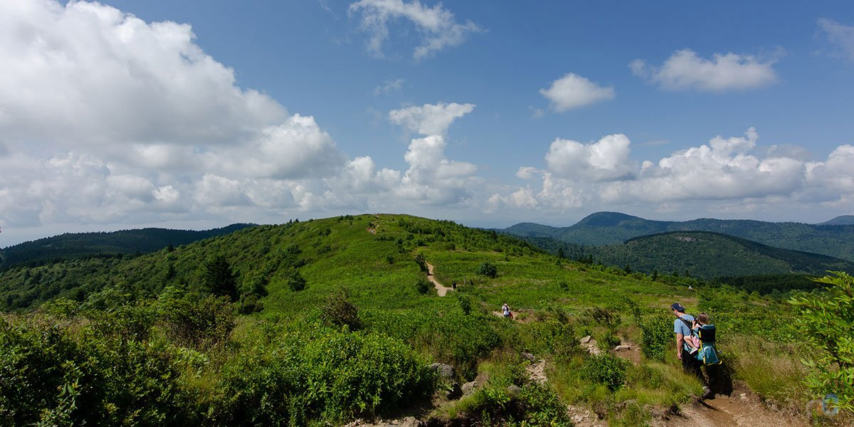The Black Balsam Knob hike is one of our favorites and this guide will show you why.