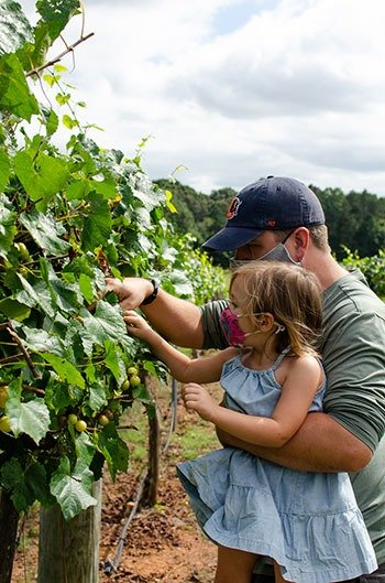Family friendly things to do in Statesville NC