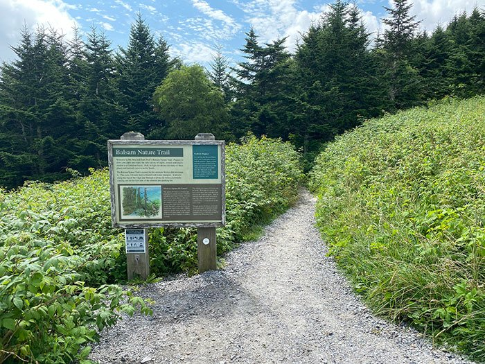 Black Mountains Hikes Mount Mitchell Balsam Nature Trail