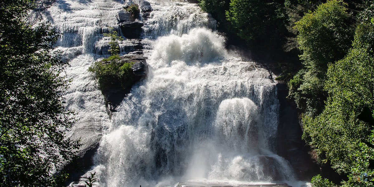 DuPont State Forest is home to famous waterfalls and even more, which we outline in our post!