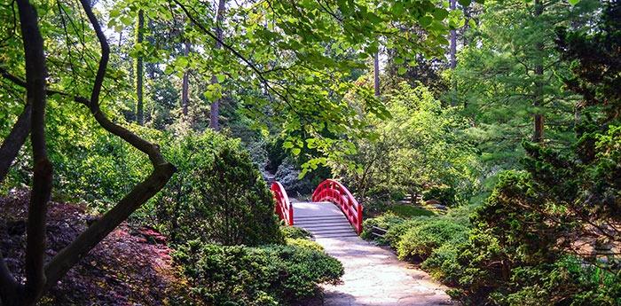 Botanical Gardens in North Carolina Duke Gardens Asiatic Arboretum and Red Bridge