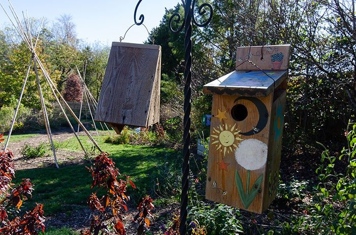 Day Trips from Greensboro NC Paul J Ciener Botanical Garden Kernersville